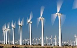 Dự án Điện gió vẫn còn nằm trên giấy chờ giá tăng