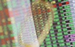 Chuyên gia phân tích động thái khối ngoại mua ròng nhiều phiên liên tiếp