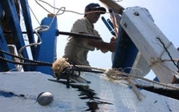 Toàn cảnh tàu Trung Quốc đâm chìm tàu cá Việt Nam
