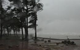 Hình ảnh bão số 2 càn quét Móng Cái