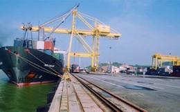 Khảo sát thành lập Chi cục Hải quan cửa khẩu cảng Nghi Sơn