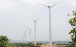 Điện gió bất động
