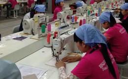 WTO đơn giản quy tắc xuất xứ: Doanh nghiệp trong nước dè chừng