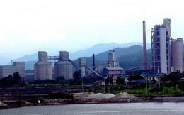 Đề nghị dừng đầu tư nhà máy ximăng, nhiệt điện gần vịnh Hạ Long