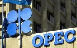 Bản đồ thị trường dầu khí thế giới đang thay đổi cục diện