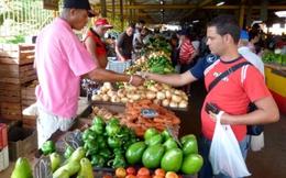 Hình thức kinh doanh tư nhân nở rộ ở Cuba