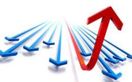 ECI, VGP: Dự kiến mức chi trả cổ tức năm 2014 hơn 10%
