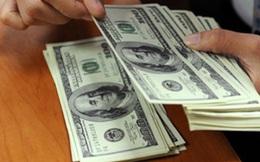 Doanh nghiệp mong ổn định tỷ giá