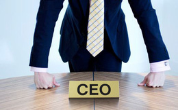 """CEO Việt thích """"vận động chính quyền""""?"""