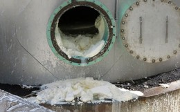 Cổ phiếu IDI giảm sàn sau tin giám đốc nhà máy tử nạn