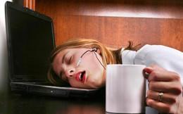 Đây là lý do tại sao bạn phải làm việc 8 tiếng mỗi ngày