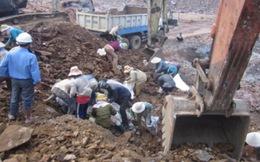 Công ty vàng Bồng Miêu bất ngờ ngừng hoạt động