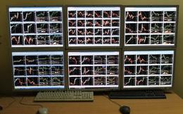 'Cú đêm' trên thị trường Forex: Đấu trí với Phố Wall