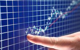 PXS, DHA, VTF, TET, DBT, EBS, VNC, VC7: Thông tin giao dịch lượng lớn cổ phiếu