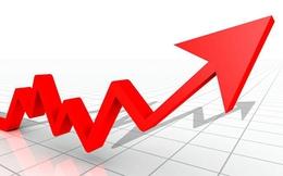 DPC, TNC, SDP, HSG: Thông tin giao dịch lượng lớn cổ phiếu