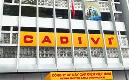 Cadivi được chấp thuận niêm yết trên HoSE