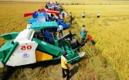 Giáo sư - Tiến sĩ Võ Tòng Xuân: Đầu tư vào nông nghiệp, đất nước giàu nhanh hơn