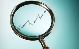 """Giải mã 2 cổ phiếu tăng giá """"chóng mặt"""""""