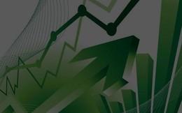 TNG, TTF, NLG, LGC, TMP: Thông tin giao dịch lượng lớn cổ phiếu