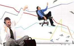 TCO: Về đích với 19 tỷ đồng lãi ròng 2012