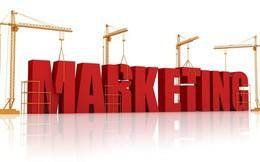 6 điều một Brand Manager cần biết về tiếp thị