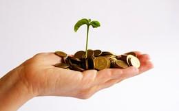 Lập doanh nghiệp mới: Xu hướng 'né' ngành tài chính, bất động sản