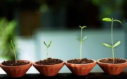 5 sai lầm cần tránh khi khởi sự kinh doanh