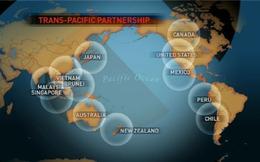 """""""Vận động viên"""" Việt Nam trên đường đến TPP"""