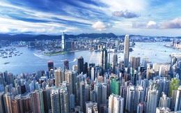 Hồng Kông: Nuôi cá, trồng rau trên… nóc nhà