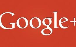 Google+ ngừng yêu cầu người dùng phải cung cấp tên thật