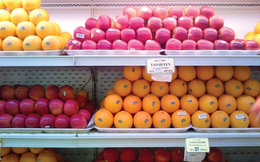 Klever Fruits phản bác tin 'Việt Nam chưa nhập lô táo nào từ Úc'