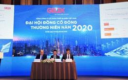 ĐHCĐ GELEX: Đẩy mạnh phát triển trên hai trụ cột, đặt kế hoạch lãi gần 1.000 tỷ đồng trong năm 2020