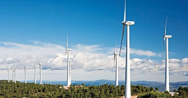 Bà Rịa – Vũng Tàu: Đầu tư dự án nhà máy điện gió hơn 4.000 tỷ đồng