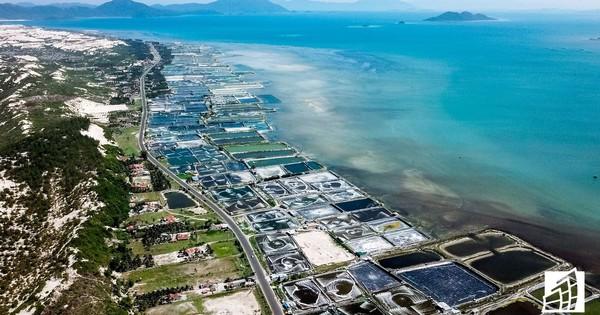 Bà Rịa-Vũng Tàu: Yêu cầu dừng ngay việc phân lô, bán đất nền trên ruộng muối