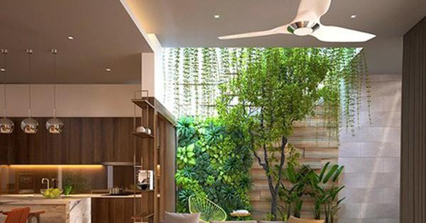 Nhà ở như công viên nhờ có vườn cây bên trong