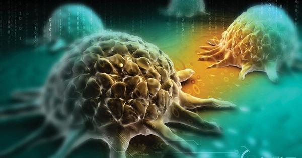 """Chuyên gia """"mách nhỏ"""" 7 điều mà ung thư rất sợ, nếu tuân thủ làm theo thì sẽ luôn trường thọ và không sợ bệnh tật"""