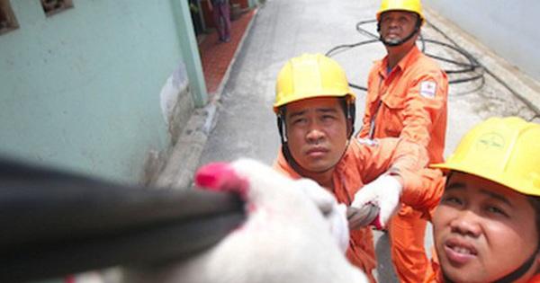 Bộ Công Thương cân nhắc cách tính một giá điện, dự kiến trình Thủ tướng cuối năm 2020