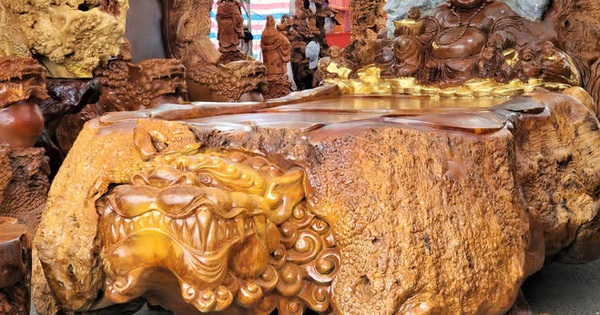 Ngắm bộ bàn ghế gỗ nu ''Cửu lân quần tụ'' nặng 4 tấn, dát vàng, giá 2,8 tỷ cho đại gia Việt