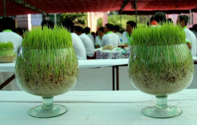 Mekong Capital đã thoái hơn 3 triệu cổ phiếu của Tập đoàn Lộc Trời