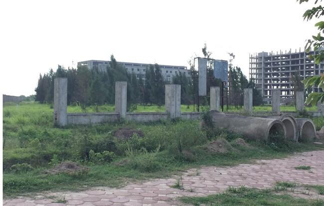 Thu hồi  3 dự án đất bỏ hoang tại Hà Nội