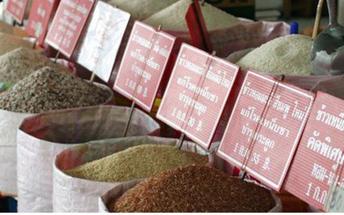Lượng xuất khẩu gạo của Thái Lan có thể sẽ xuống thấp nhất 10 năm