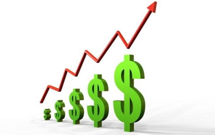 SCI thông qua phương án phát hành 8 triệu cổ phiếu chào bán cho cổ đông hiện hữu