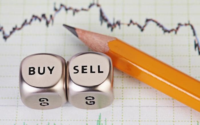VNM, STB, CRE, QTP, LMH, DAH, ELC, YTC, C32: Thông tin giao dịch lượng lớn cổ phiếu