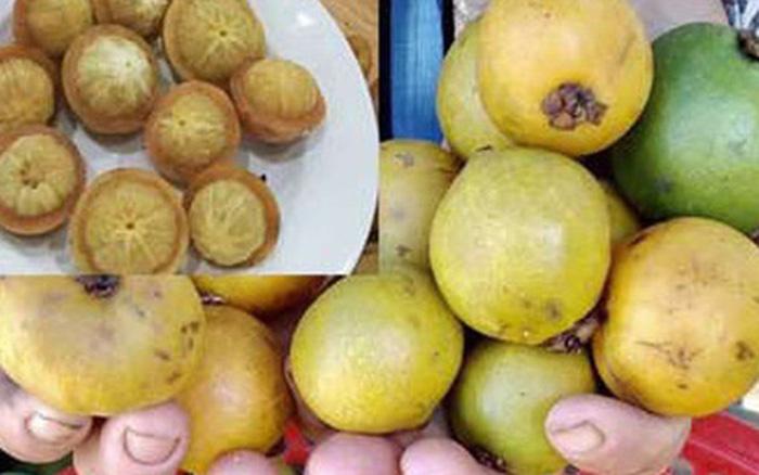 Quảng Ngãi: Trái dại vị chua ngọt -