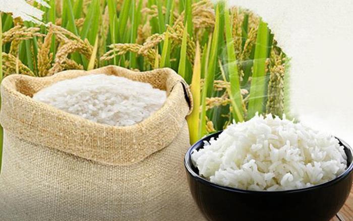 Covid-19 gây tổn thương các thị trường gạo, tấm và ngô đến mức nào?