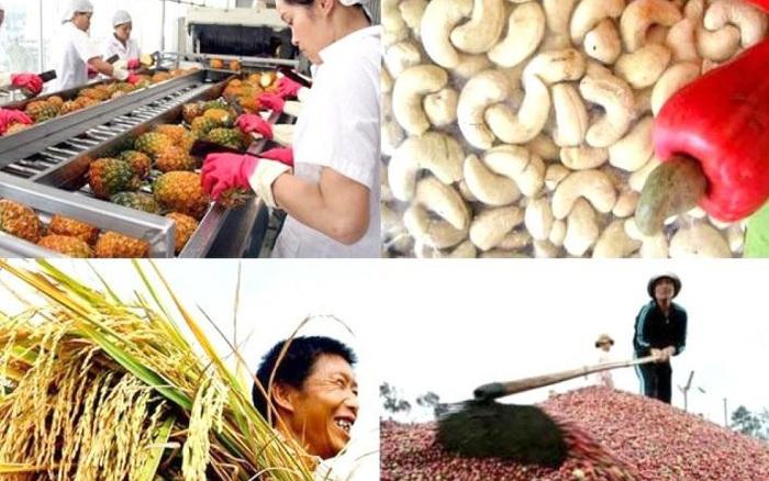 Dự báo lạc quan về xuất khẩu nông - lâm - thủy sản năm 2021