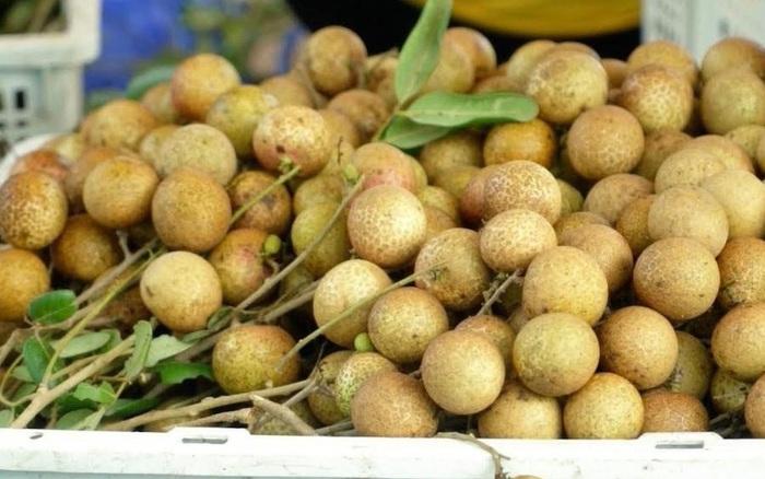 Hàng ngàn tấn trái cây rớt giá, chờ thương lái đến mua