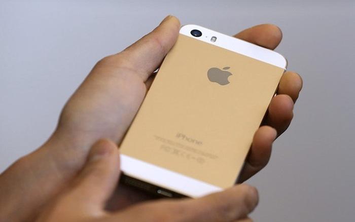Một ai đó vừa giành giải thưởng nhiếp ảnh năm 2021 với một chiếc iPhone 5S